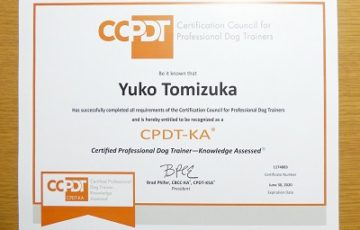 CPDT-KA合格