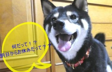 202018.5.13 お休みのお知らせ