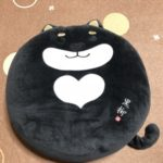 2018.9.9黒柴クッション