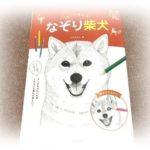 2018.10.3 なぞり柴犬