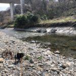 2019.3.22 川にお散歩
