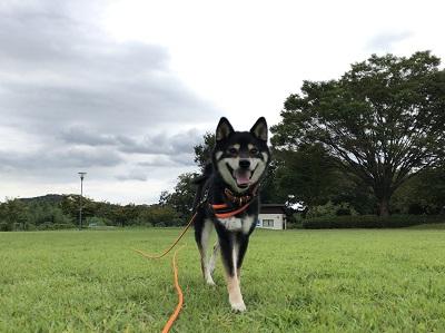 2019.9.24 小田野中央公園 笑顔