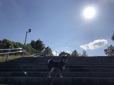 2019.10.28 良い天気