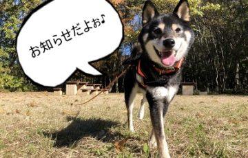 2019.1.23 お知らせ