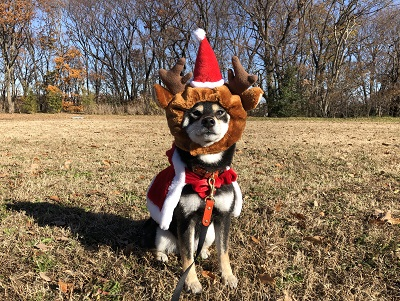 2019.12.25 メリークリスマス