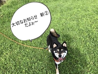 2019.12.2 大切なお知らせ新②