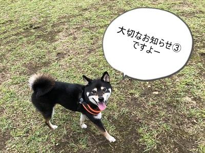 2019.12.4 大切なお知らせ③