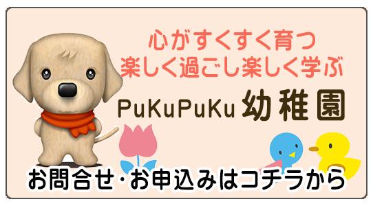 犬の心が育つ PukuPukuの犬の保育園・幼稚園